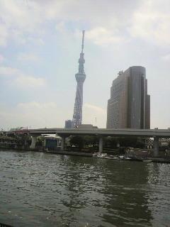 盆休みに東京に行きました