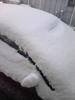 兵庫県どう?この雪